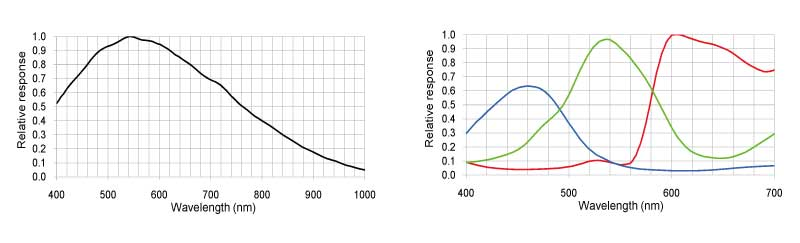 gcp4241_graph