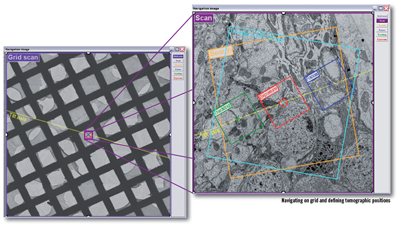 tvips_tomography_image1