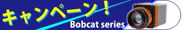Xenics社Bobcatシリーズ キャンペーン